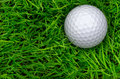Single golf ball laying in semi rough overhead macro close up shot of one sunken nestling on a local course Stock Images