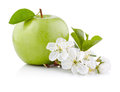 Single green apple with leaf and flowers on a white background Royalty Free Stock Photography