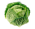 Single green cabbage fruit  isolated on white Royalty Free Stock Photo
