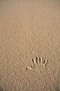 Single Hand Print In Beige Sand