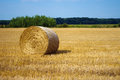 Single hay bale focus on in the field Stock Images