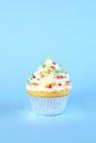 Single iced cupcake Royalty Free Stock Photo