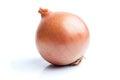 Single onion  on white Royalty Free Stock Photo