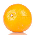 Single orange fruit over a white reflective background Royalty Free Stock Images