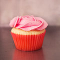 Single pink rose vanilla cupcake with blurred background Royalty Free Stock Photo