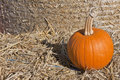 Single pumpkin on a hay field Royalty Free Stock Photo