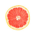 Single ripe grapefruit cut in half isolated over Royalty Free Stock Photo