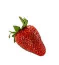 Single strawberry isolated on white background Royalty Free Stock Photo