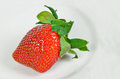 Single Strawberry on white plate Royalty Free Stock Photo