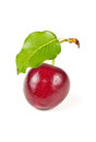 Single sweet cherry Royalty Free Stock Photo