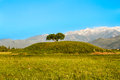 Single tree mountains sky kazakhstan almaty road issyk image spring Royalty Free Stock Image