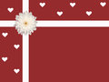 Single white daisy and ribbon with hearts valentine s day card red background isolated Royalty Free Stock Photos