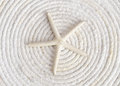 Single white starfish laying white coiled rope Stock Photo