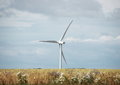 Single windmill in grass field with clouds Royalty Free Stock Photo