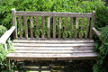 Single wooden bench in foliage a weathered with leaves all around Stock Photo