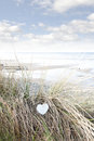 Single wooden heart on beach dunes Royalty Free Stock Photo