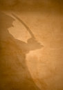 Sinister intent a shadow playing along a plaster wall suggest mal Royalty Free Stock Photo