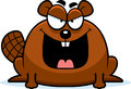 Sinister little beaver a cartoon illustration of a looking Royalty Free Stock Image
