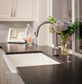 Sink with flower arrangement in new home vase and flowers newly constructed Stock Photography