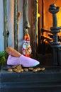 Sinterklaas Stock Images