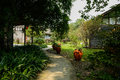 Sinuous shady path outside Chinese traditional buildings in sunn Royalty Free Stock Photo