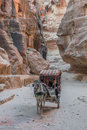 The siq path in nabatean city of  petra jordan Royalty Free Stock Images
