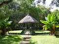 Sir seewoosagur ramgoolam botanical garden in pamplemousses mauritius Royalty Free Stock Images