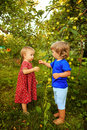 Sister and brother in the garden cute little girl with little relax near apple tree Stock Image