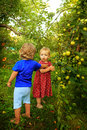 Sister and brother in the garden cute little girl with little relax near apple tree Royalty Free Stock Photo