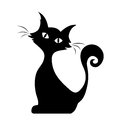 Sitting cat. Vector black silhouette.