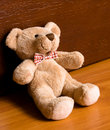 Sitting teddy bear Stock Photos