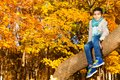 Sitting on the tree in autumn park black years old black boy with maple orange leaves Royalty Free Stock Image