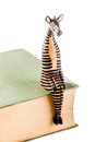 Sitting zebra a wooden on a book isolated over a white background Royalty Free Stock Photo