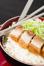Siu yuk chinese crispy roast pork belly served with steamed rice Stock Photography