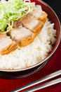 Siu yuk chinese crispy roast pork belly served on top of steamed rice Stock Image