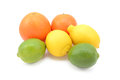Six citrus fruits - limes, lemons and oranges Royalty Free Stock Photo