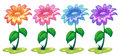 Six colorful flowering plants illustration of the on a white background Stock Photo