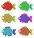 Six Colourful Fish Stock Image