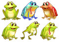 Six different frogs illustration of the on a white backgrounds Royalty Free Stock Photo