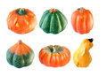 Six differents pumpkins isolated on a white background Royalty Free Stock Image