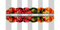 Six horizontal mirrored semicircles full of fresh fruits Royalty Free Stock Photo