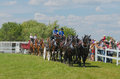 Six horse hitch teams of heavy draft horses percherons and belgians at country fair south mountain country fair http Stock Images