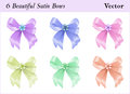 Six satin bows beautiful colored with a little flower Stock Image