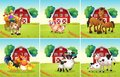Six scenes with animals on the farm