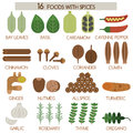 Sixteen foods with spices illustrator Stock Photos