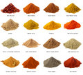 Sixteen piles of Indian powder spices Stock Photography