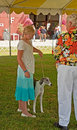 Skagit County Fair 4H Dog Show Royalty Free Stock Photography