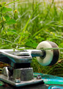 Skateboard wheel in the grass Royalty Free Stock Photos