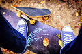Skateboarder standing on a bench in city park autumn Royalty Free Stock Image