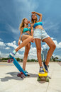 Skateboarding portrait of beautiful women on skateboards at summer park Royalty Free Stock Images